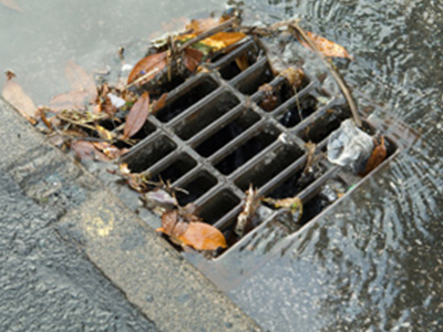 Storm Drain Cleaning | Raider Rooter